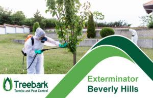 Exterminator-Beverly-Hills