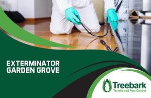 Exterminator-garden-grove