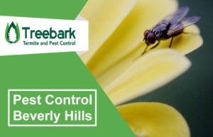 Pest-Control-Beverly-Hills