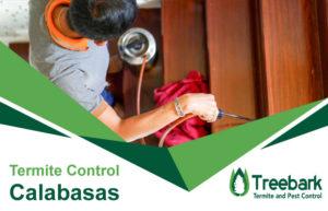 Termite-Control-Calabasas