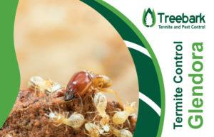 Termite-Control-Glendora