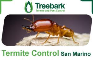 Termite-Control-San-Marino