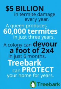 Termite Control in Orange, Treebark Info Graphic - Website Copy