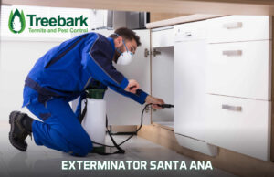 Exterminator Looking Inside a Cabinet in Santa Ana