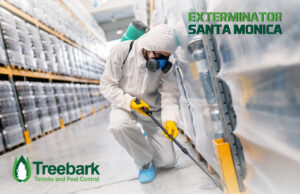 Santa Monica Exterminating Job