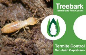 Termite Control San Juan Capistrano