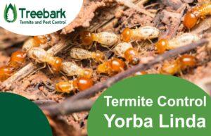 Termite-Control-Yorba-Linda